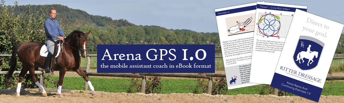 Arena GPS 1.0